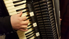 Joueur d'accordéon Photographie stock