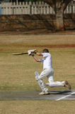 Joueur de cricket Photo stock