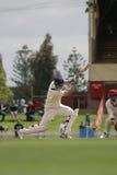Joueur de cricket image libre de droits