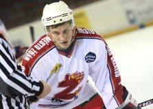 Joueur de hockey sur glace Image libre de droits