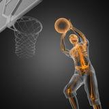 Joueur de match de basket Photos stock