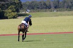 Joueur de polo Images stock