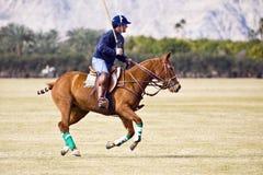 Joueur de polo sur le cheval galopant Photographie stock