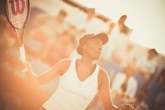Joueur de tennis féminin du monde Venus Williams Images libres de droits