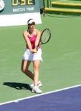 Joueur de tennis professionnel. Photo libre de droits