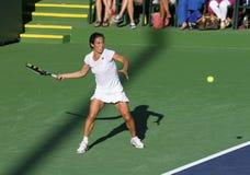 Joueur de tennis professionnel. Images stock