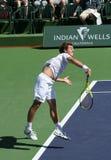 Joueur de tennis professionnel. Images libres de droits