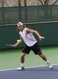 Joueur de tennis professionnel. Photos stock