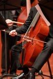 Joueur de violoncelle Compositeur, musique Portrait de violoncelliste jouant la musique classique sur le violoncelle sur le fond  photo libre de droits