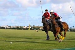 Joueur mâle de polo Image libre de droits