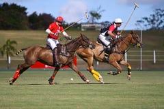 Joueur mâle de polo Images stock