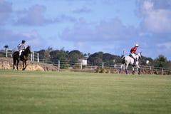 Joueur mâle de polo Photo stock