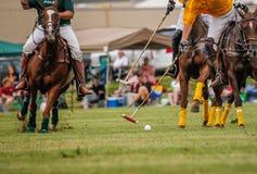 Joueurs dans un match de polo Photos stock