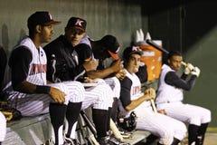 Joueurs de baseball dans la pirogue d'équipe Photographie stock libre de droits