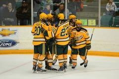 Joueurs de Clarkson dans le jeu d'hockey de NCAA Images stock