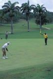 Joueurs de golf au Tobago Photographie stock libre de droits