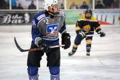 Joueurs de hockey Photos stock