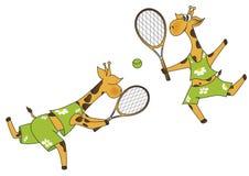 Joueurs de tennis de giraffes Photographie stock