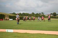 Joueurs mâles de polo Images libres de droits
