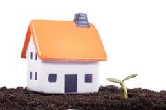 Jouez la maison sur le sol noir avec la pousse verte Photographie stock libre de droits