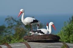 Jouez le nid d'une cigogne avec des oiseaux là-dessus Photographie stock libre de droits