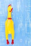Jouez le poulet shrilling jaune sur le fond en bois bleu Photographie stock