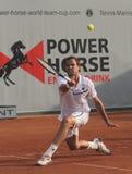 Jour 2, cuvette 2012 d'équipe du monde de cheval de pouvoir de tennis Photographie stock