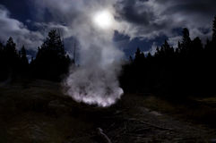 Parc national de Yellowstone, Wyoming, Etats-Unis Photos libres de droits