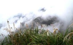 Jour brumeux dans les montagnes images libres de droits
