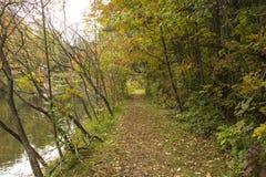 Jour calme d'automne le long de la rivière d'Ausable avec le chemin le long de la rive Photos libres de droits