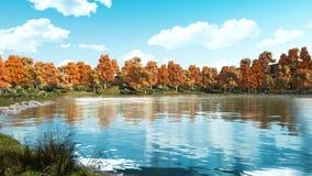 Jour calme d'automne sur un rivage d'étang scénique de forêt banque de vidéos