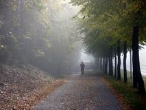 Jour chaud et brillant d'automne photo stock