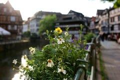 Jour d'été à Strasbourg Photos libres de droits