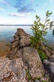 Jour d'été par un lac Photos libres de droits