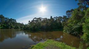 Jour d'été sur un lac Photographie stock libre de droits