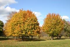 Jour d'automne Image libre de droits