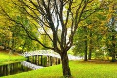 Jour d'automne Photo libre de droits
