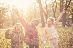 Jour d'automne de beauté en parc Photos stock