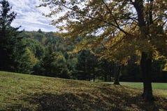 Jour d'automne de Diamond Hill Photo libre de droits