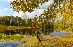 Jour d'automne sur le lac Images stock