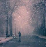 Jour d'hiver Photographie stock