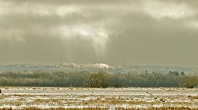 Jour d'hiver photos libres de droits