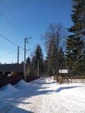 Jour d'hiver Photo libre de droits