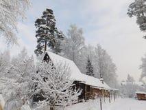Jour d'hiver Photo stock