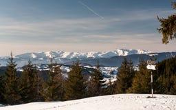 Jour d'hiver clair Images libres de droits