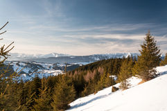 Jour d'hiver clair Images stock