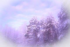 Jour d'hiver frais en Caroline du Nord Images libres de droits