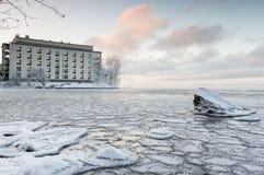 Jour d'hiver givré à côté de lac Image stock