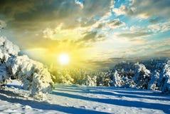 Jour d'hiver lumineux Photo libre de droits