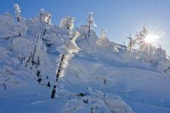 Jour d'hiver lumineux dans les montagnes photographie stock libre de droits
